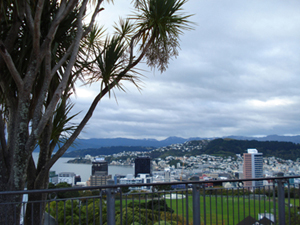 view from the Observatories, Wellington, photo by Heather Hobden